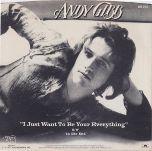 andy-gibb-i-just-want-to-be-your-everything-rso