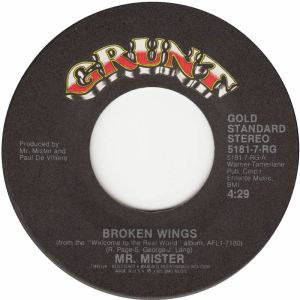 mr-mister-broken-wings-grunt