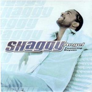 Shaggy-angel